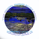 new swamp logowht600res copy