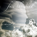 face the wind cd cover