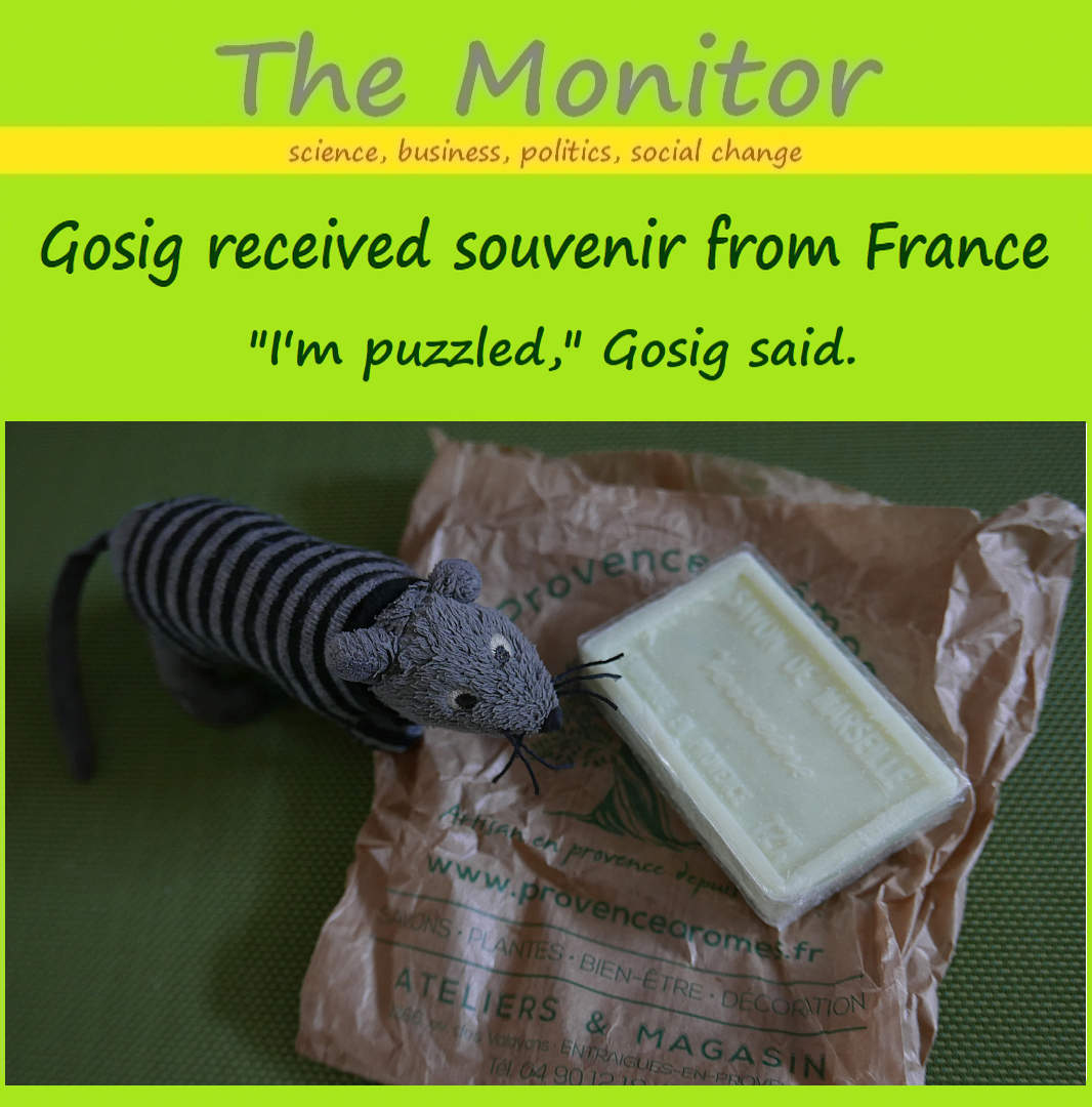 gosig received souvenir from france 02