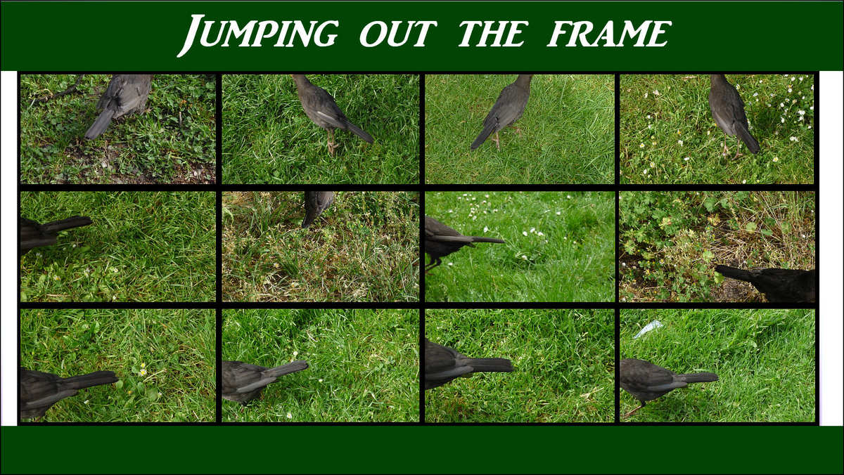 jumping out frame 01