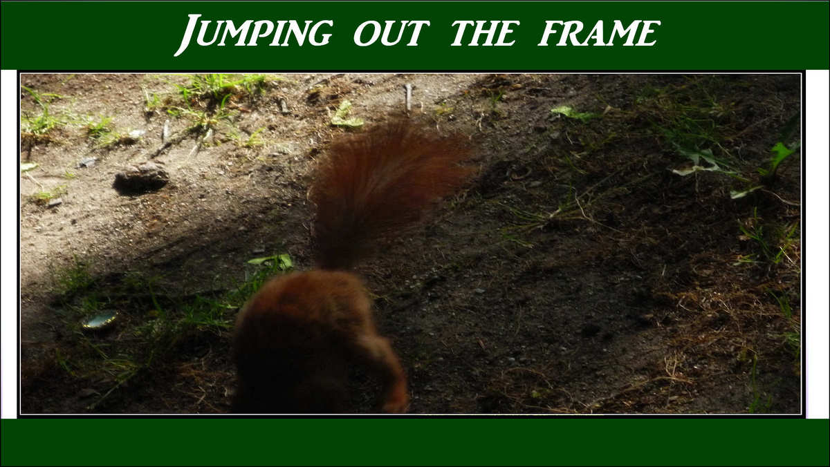jumping out frame 02