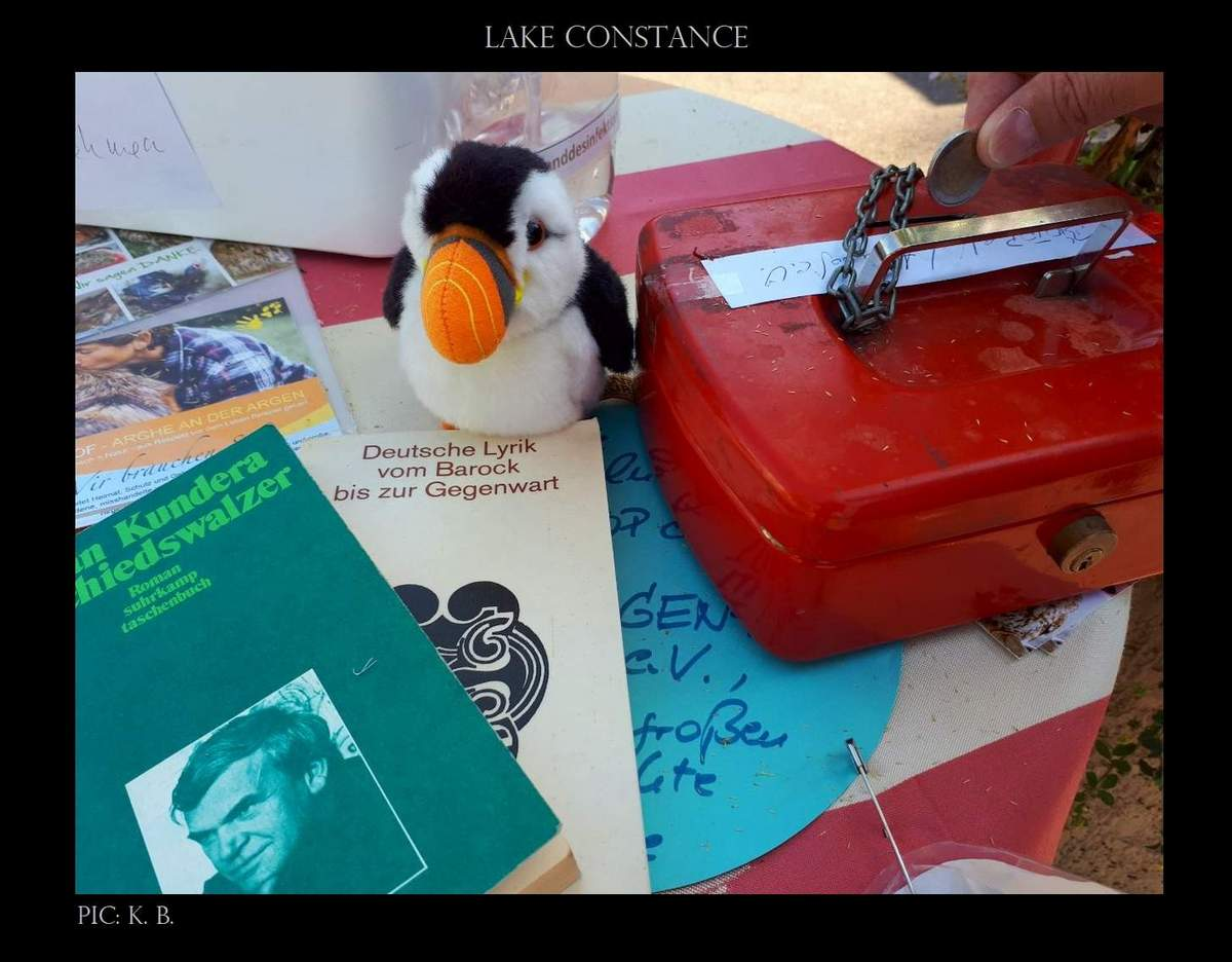 puffin goes on vacation 05