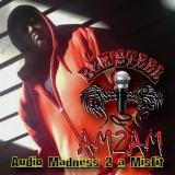 AM2AM: Audio Madness 2 A Misfit cover art